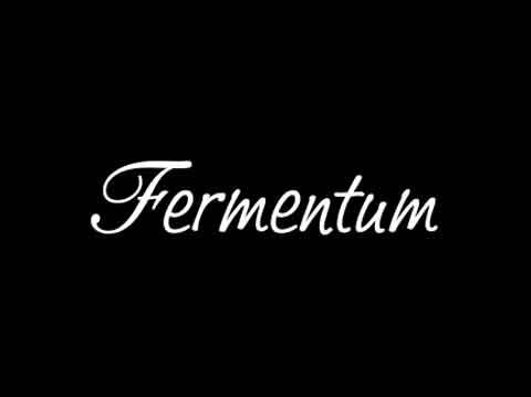 Fermentum-www.fermentum.it